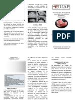 Triptico Revision Del Bloqueo de Giro de Una Ppr