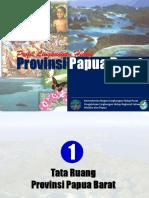 Profil Papua Barat-972003
