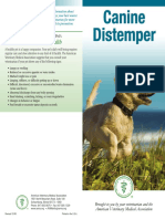 Distemper Brochure
