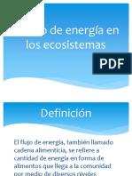 El Flujo de Energía en Los Ecosistemas