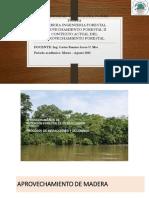 CONTEXTO DEL APROVECHAMIENTO FORESTAL 2010.pdf
