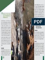 Pros 15-16 (21).pdf