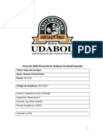 FORMATO_TRABAJO_UDABOL[1]