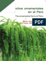 Helechos ornamentales del peru