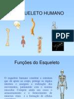 Indicadores Epidemiologicos Mortalidade Infantil