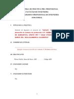 Plandeprcticaspre Profesionalesuss 170201214925 Converted