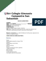LABORATORIO DE FÍSICA IV PERIODO 6°