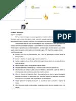 QIM na Matemática_Alexandra Justiça_Luís Carreiro_sessão nº 1