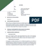 354330589-Informe-Elmer.docx