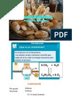 carbohidratos-enzimas