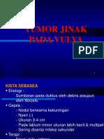 Tumor Jinak Pada Vulva