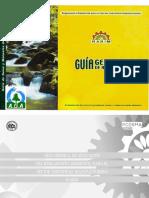 186558061-Guia-Rasim.pdf