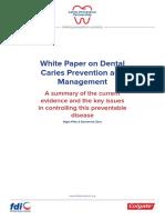 2016 Fdi Cpp White Paper