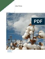 Saber Sobre Textiles Fibras