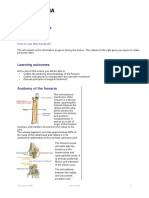 FSP ORP Handout English Forearm Fractures Final