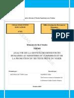 Analyse de La Gestion Des Recources Humaines