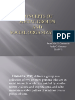 Concepts of Social Groups