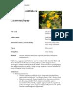 Eschscholzia Materia Medica herbs