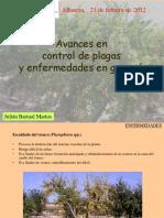 controlplagasgranado.pdf