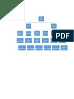 organisation stc.pdf
