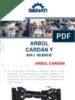 Arbol Cardan y Palieres