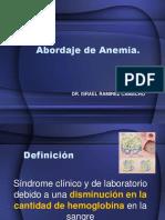 Abordaje-anemias