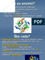 03-enzimi