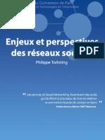 Memoire Reseaux Sociaux Philippe Torloting