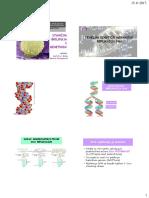 P21 DNA Replikacija 2017-18