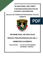 Modelo Informe de Practicas 2017 Acosta