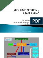 met protein fn digesti dan metend.ppt