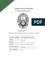 Parametros MCI.docx