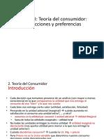 2. Teoría Del Consumidor