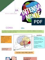 REPASO NEUROLOGIA ENARM