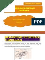 MEKANISME RESPIRASI TUMBUHAN 2.pptx