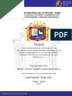 Cari_Sucasaca_Pathy_Yanett.pdf