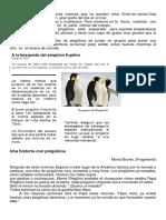 Los pingüinos - Lectura Básica.docx
