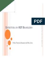 1 EstruturaSEP Brasil