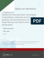 uba_ffyl_t_2017_30620.pdf