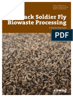 Black Soldier Fly Biowaste Processing 5x