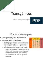 Aula 4 -Transgenia