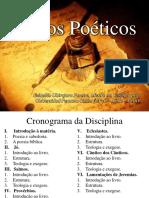 Prova 1 - Introdução.pdf