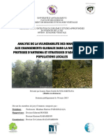 Analyse de La Vulnerabilite Des Mangrove
