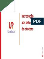 unintese_funcoes-cognitivas