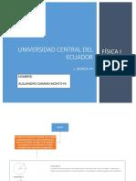 Fundamento Conceptual.mcuv.Montoya Alejandro.P4