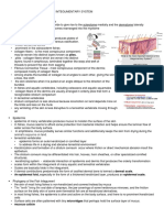 COMPARATIVE ANATOMY OF THE INTEGUMENTARY SYSTEM.docx