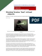 Monkey Brains Feel Virtual Objects.