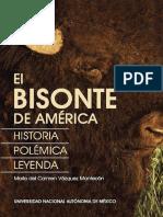 El Bisonte de América Historia, Polémica y Leyenda