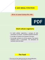 Lecture 21-Nutrients and Renal Function-Dr Dr Sri Lestari Sulistyorini MSc AIFM 2018