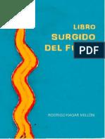 Rodrigo Hagar Millón - Libro Surgido Del Fuego